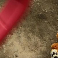 Mreže za otmicu i zlostavljanje djeteta