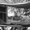 ਅਮਰੀਕਨ ਯੂਨੀਵਰਸਿਟੀ ਦਾ ਪ੍ਰਭਾਵਸ਼ਾਲੀ ਮੈਕਸੀਕਨ ਫਲੂ ਵਾਇਰਸ ਵਿਕਸਿਤ