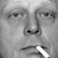 De moord op Theo van Gogh een joods complot van list en bedrog?
