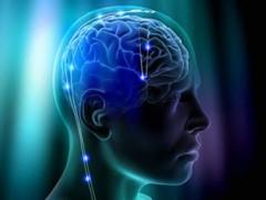 ყველას მომავალში ტვინის კავშირი ინტერნეტით