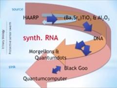 შავი გოო, ქიმიტრალები, ნანოტექატი თქვენი სხეულისა და მეტი რა უნდა იცოდეთ