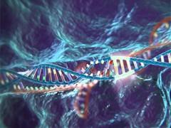 Danĝera disvolviĝo: la ŝtato volas kreski homajn embriojn kaj permesi adaptojn de ADN