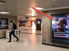 "Problem, reakcija, rešenje: ""Brisel sada prihvata vojsku na ulicama"", pod naslovom NRC"