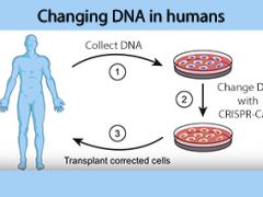 क्या टीका आपके डीएनए को अनुकूलित करने के लिए तकनीकी रूप से उपयोग की जा सकती है?